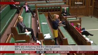 EU Withdrawal Bill - Committee - Day 3 Highlights