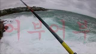 """#바다낚시교실#Spearfishing#바다낚시동영상""""어…"""