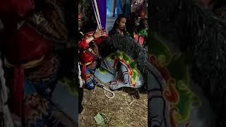 Download Video Kepang Turonggo Kencono Mulyo Samarinda MP3 3GP MP4