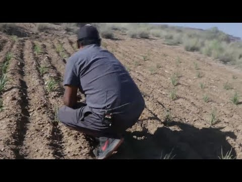 Rare look into Hopi reservation shows tribe struggles and triumphs