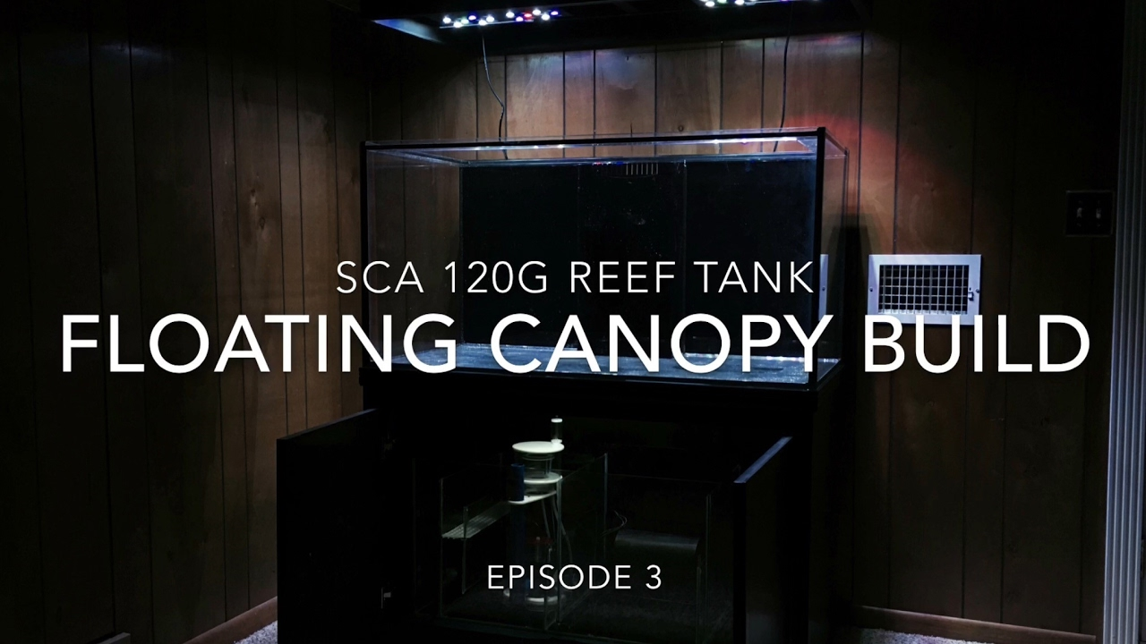 sca 120 gallon reef tank | ep.3 | floating canopy build - youtube