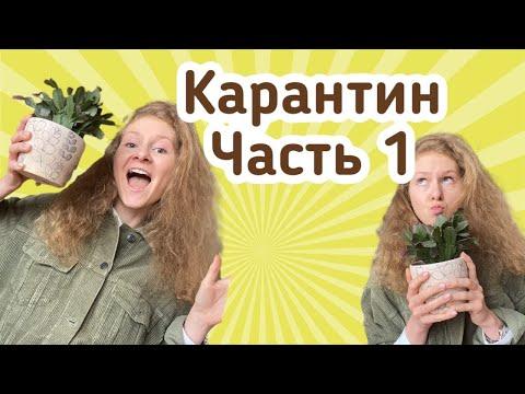 КАРАНТИН В МОСКВЕ/Дневник студента/ Общежитие РГУ нефти и газа Губкина