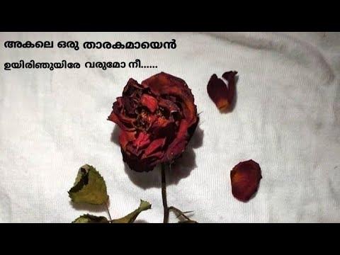 Akale Song Akale Oru Tharakamayi Malayalam New Song 9 Movie Malayalam New Song With Lyrics Youtube
