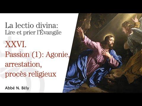 Conférences sur la Lectio divina XXVI. Agonie, arrestation, procès religieux - Abbé Nicolas Bély