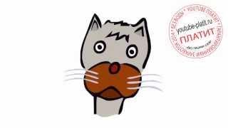 Коты картинки нарисованные  Как нарисовать морду кота