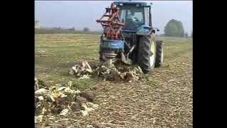 Удаление пней Rotor (1)(Продажа сельхоз техникики из Италии. ЧП