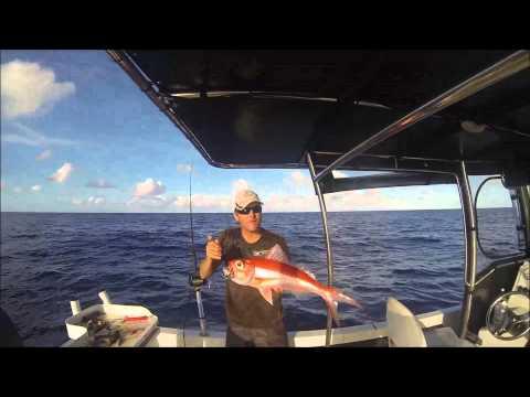 Deep Drop Fishing QLD Continental Shelf