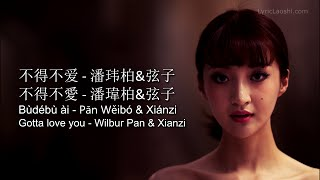 Wilbur Pan - Bu De Bu Ai 不得不爱 - Pinyin Lyrics, Chinese, English. [LyricLaoshi]