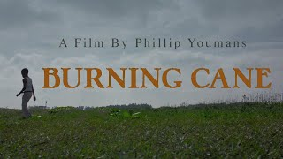 Burning Cane 2019 Official Trailer