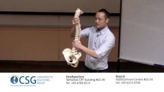 Baixar What is a Healthy Spine? - Dr Richard Pang Sae Won, D.C. from CSG