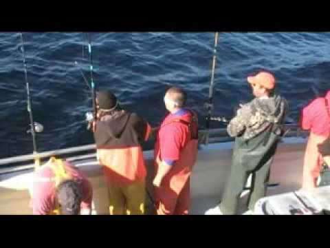 The Gambler - Wreck Discovery Fishing Trip