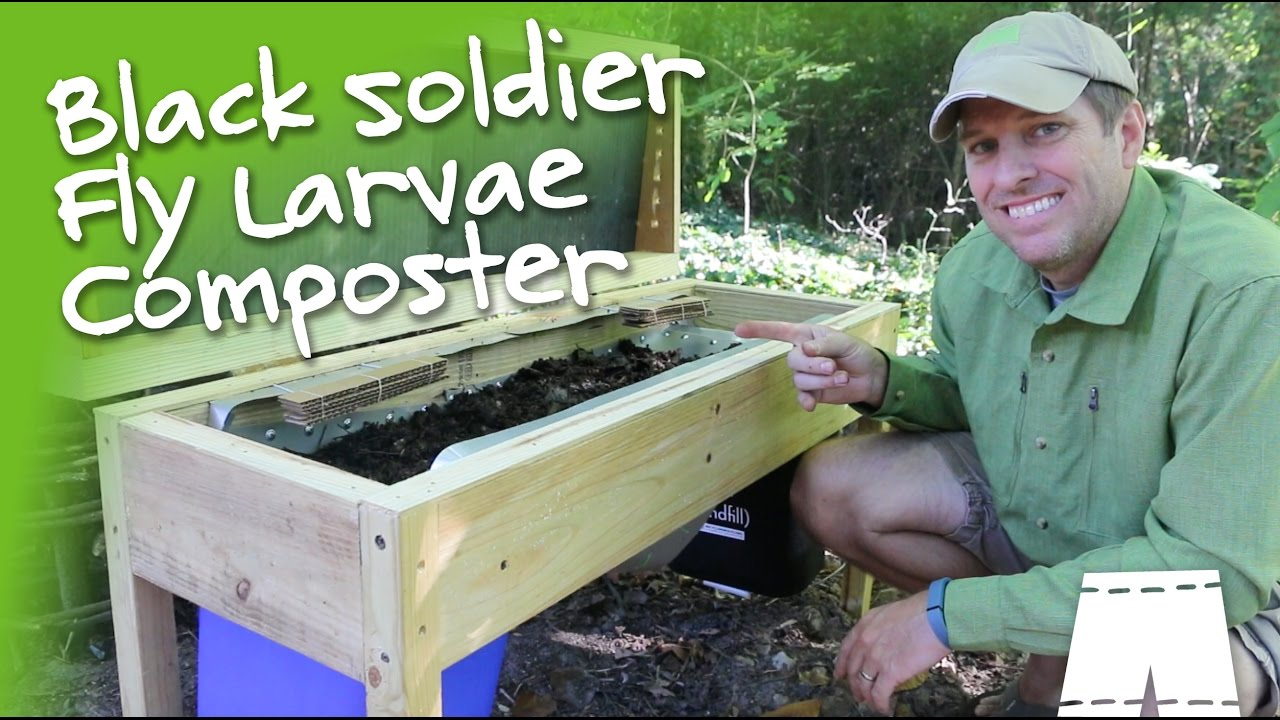 How To Make A Diy Soldier Fly Larvae Composting Bin Youtube