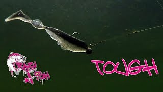 Tough Crazy Fish   Underwater