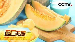《农广天地》 20190718 哈密瓜沙滩种 山坡芒果有不同| CCTV农业