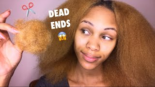 GET RID OF DRY/SPLIT/DEAD ENDS | TRIMMING NATURAL HAIR