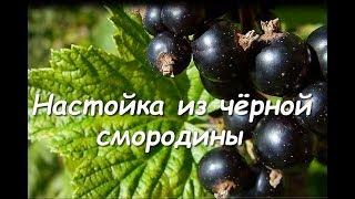 Настойка из черной смородины