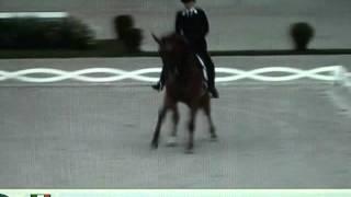 Valentina Truppa&Eremo del Castegno Freestyle Grand Prix Aachen