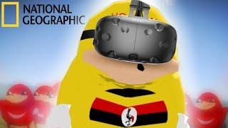 Ugandan Knuckles Documentary: VR Edition