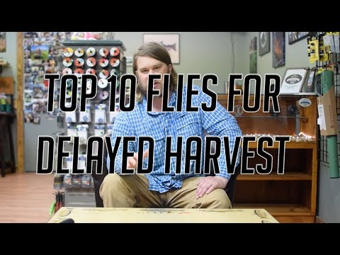 Top 10 Flies For Delayed Harvest - Due South Outfitters
