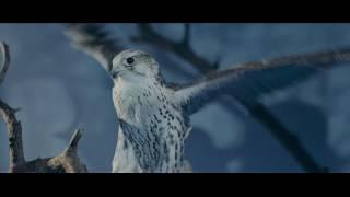 Marina TABRI  - Primal Wheel ( премьера клипа  2018)