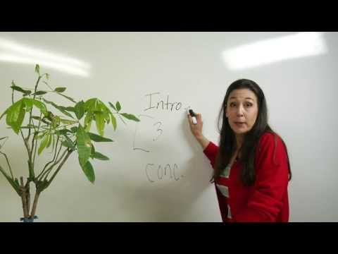 Видео Body language essay download