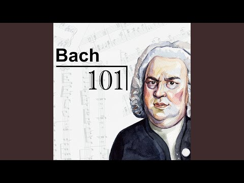 J.S. Bach: Brandenburg Concerto No. 4 In G Major, BWV 1049 - 1. Allegro