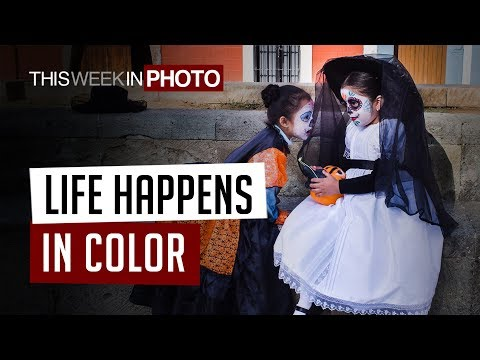 Life Happens in Color