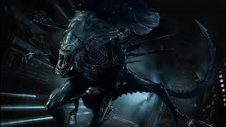 DISELO REINA - Alien Fireteam Elite   ZellenDust