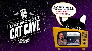 Live from the Cat Cave with Jackson Galaxy 💜🐾 12/14 - 1:30PM PST