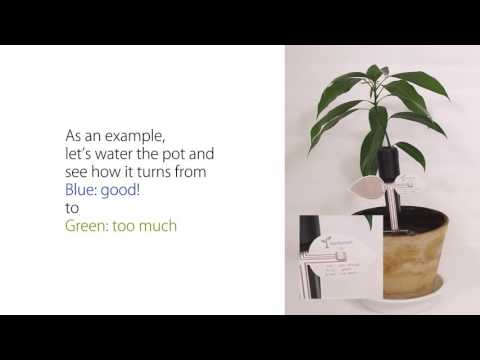 How to Use SenSprout IndieGoGo (Short Version)