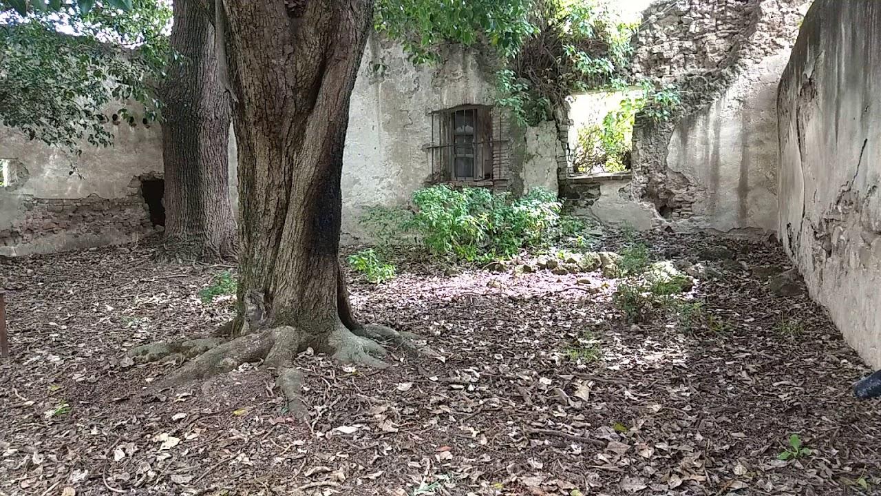 Hacienda Santiago Ovando - Patio trasero