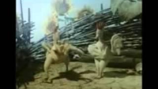 Курица Мультфильм