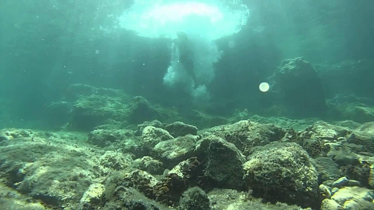 Underwater View of Rock Jumpers