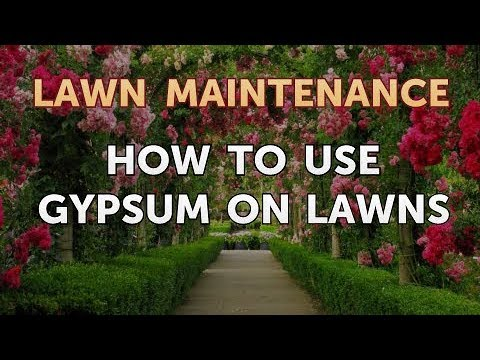 how to use gypsum on lawns - Garden Gypsum