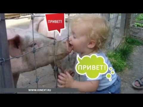 Северная Осетия :: Новости за неделю :: 15-Й РЕГИОН