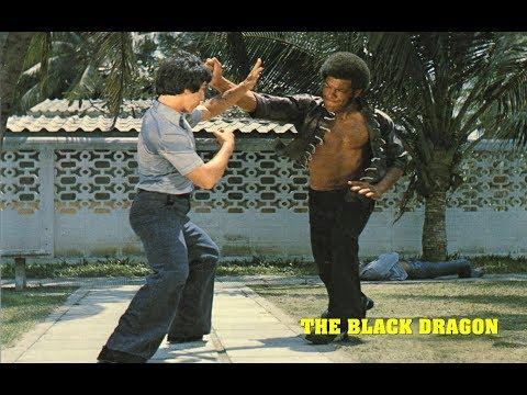 Wu Tang Collection - Ron Van Clief in Black Dragon