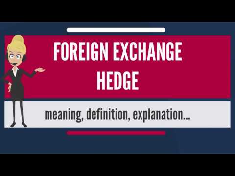 What Is FOREIGN EXCHANGE HEDGE? What Does FOREIGN EXCHANGE HEDGE Mean?