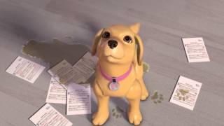 Barbie - Állatfelügyelet