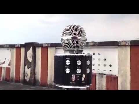 Karaoke Bluetooth Mic With Recording
