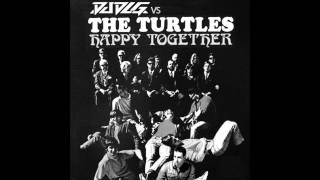 DJ DLG vs The Turtles - Happy Together