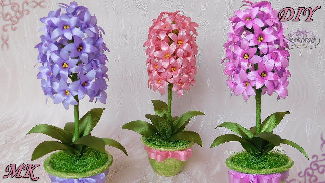 Где купить цветы в горшках по низким ценам в минске, подскажет relax. By. Каталог комнатных растений с ценами, предложения интернет-магазинов,