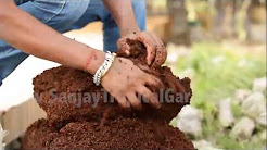 Sanjay Tropical Gardens - Landscape Contractor in Delhi NCR