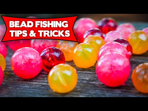 Bead Fishing BASICS For TROUT & STEELHEAD.