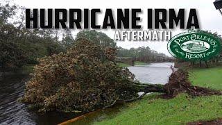 The Aftermath Of Hurricane Irma At Disney's Port Orleans Riverside Resort.