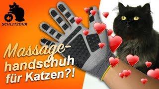 🔥Katzenhaare entfernen durch streicheln? Fellpflege-Handschuhe von PEGACARE