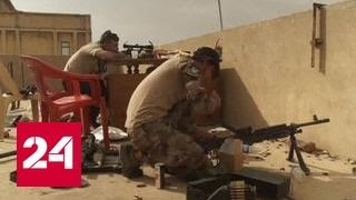 Аналитики об операции в Мосуле: армия Ирака