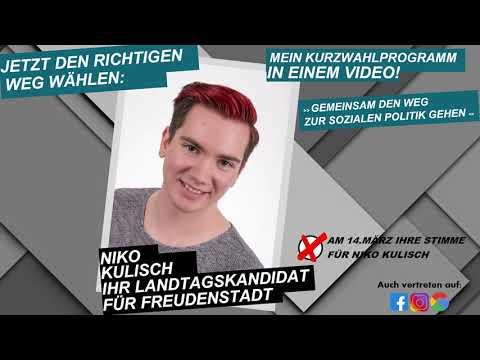 Niko Kulisch | Wahlvideo | Landtagskandidat für Freudenstadt
