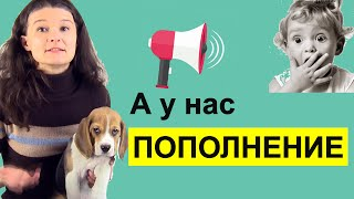 Перевод 10 идиом и фраз [английские идиомы]