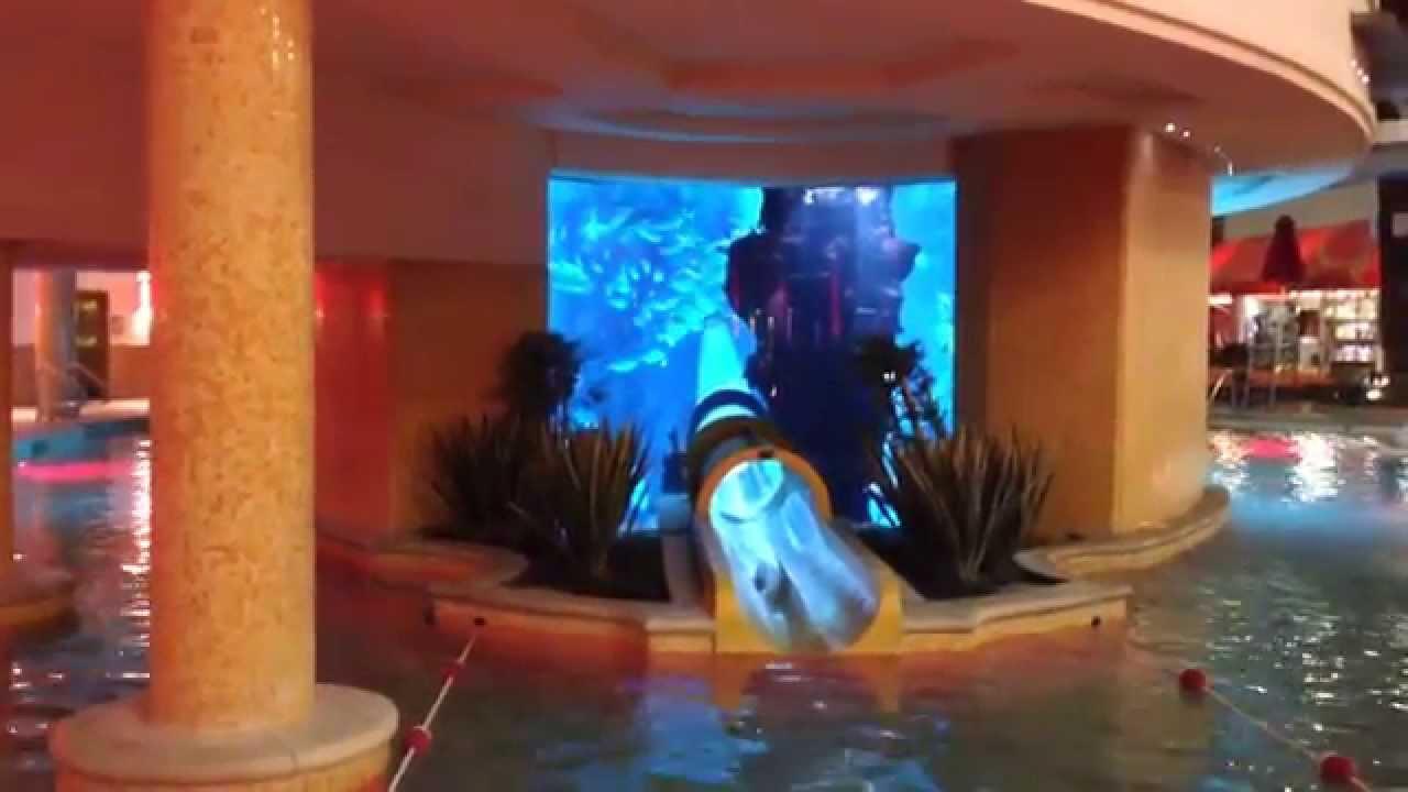 Fremont Street Golden Nugget Shark Swimming Pool Youtube