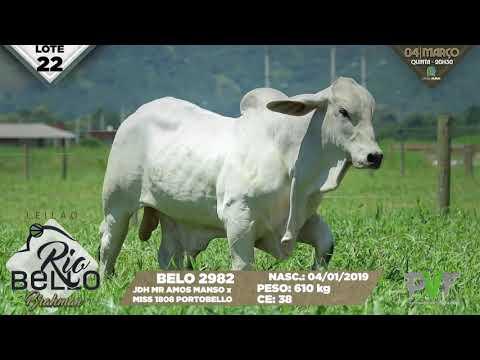 LOTE 22   BELO 2982